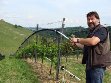 Schutznetze im Weinbau Schnelle Schutzstellung